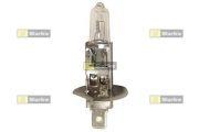 STARLINE  Автомобильная лампа: 12 [В] H1 55W/12V P14.5s