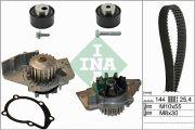 INA 530023530 Водяной насос + комплект зубчатого ремня