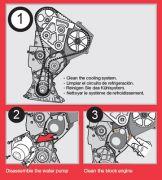 Airtex  Водяной насос + комплект зубчатого ремня