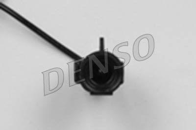 DENDOX1000